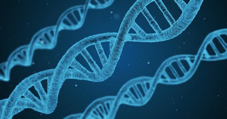 DNA婚活